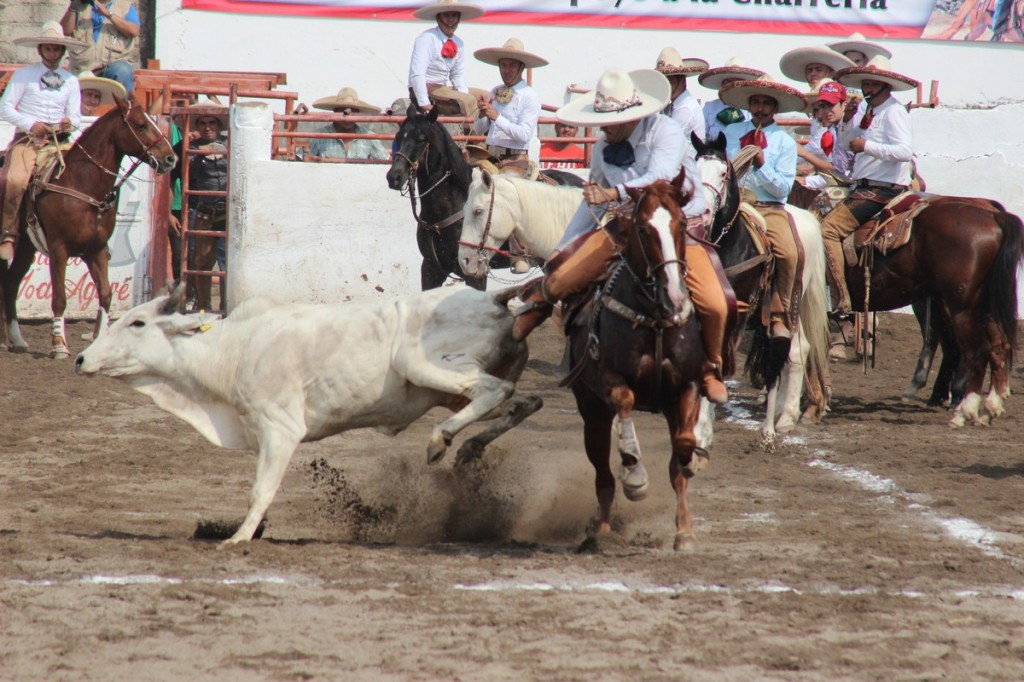 CHARROS-1024x682