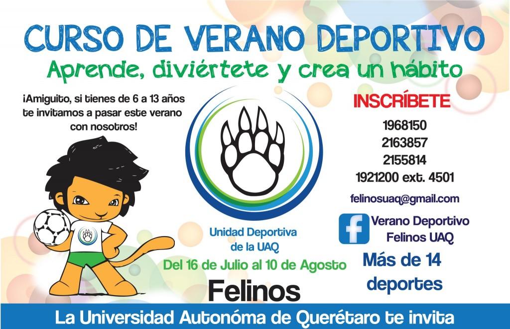 """» UAQ invita al Curso de Verano Deportivo """"Felinos"""" - photo#34"""