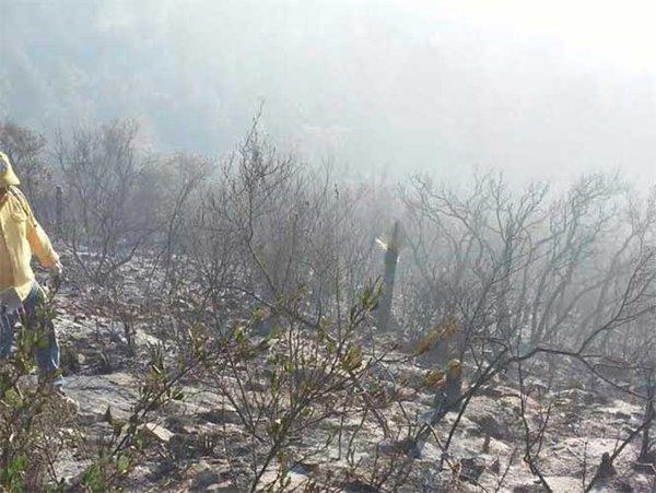 Incendio Coahuila