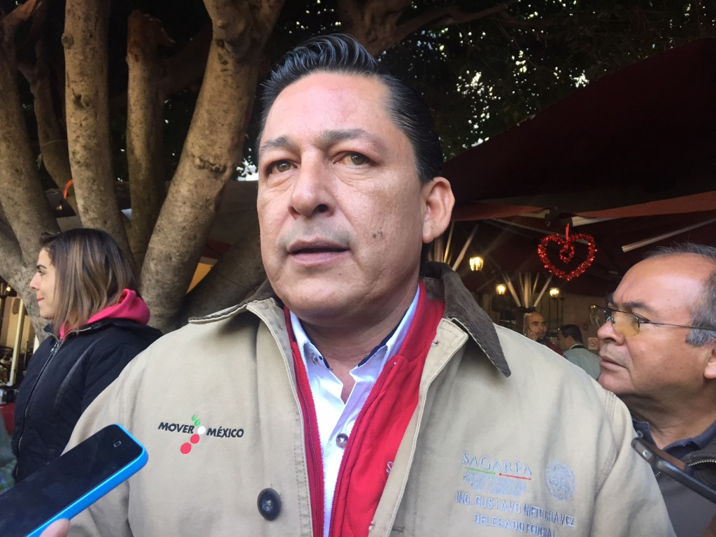 Gustavo Nieto