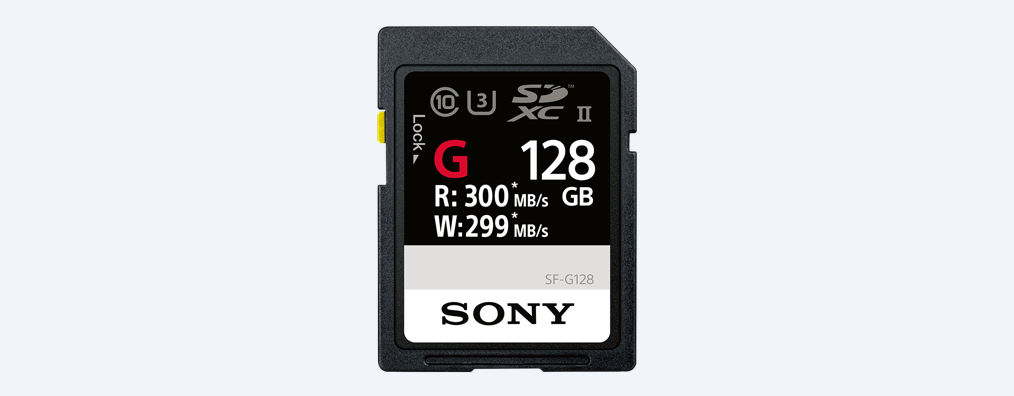 Sony Tarjeta SD