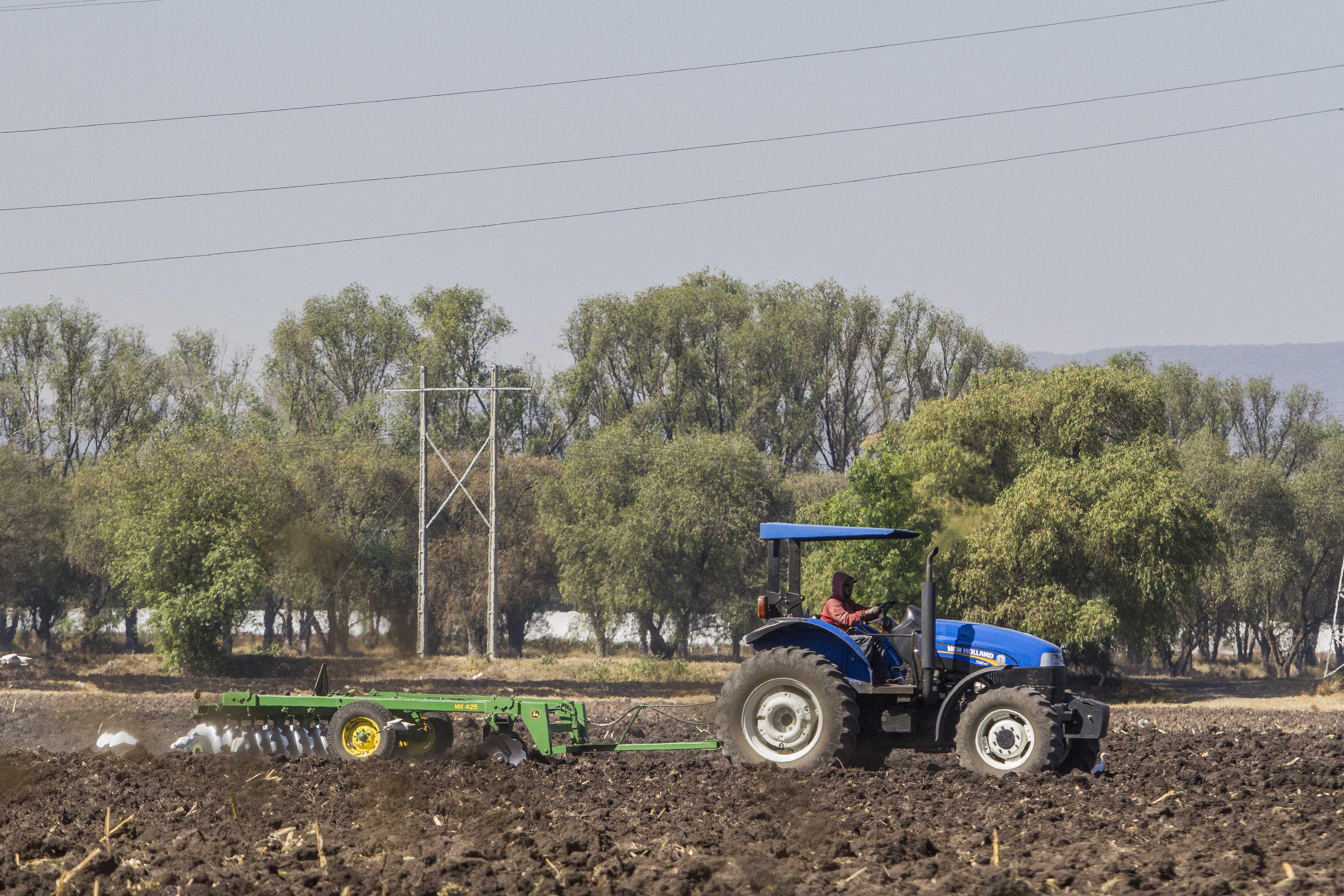 Primeras heladas de octubre generan afectación en 6 mil hectáreas agrícolas de Querétaro