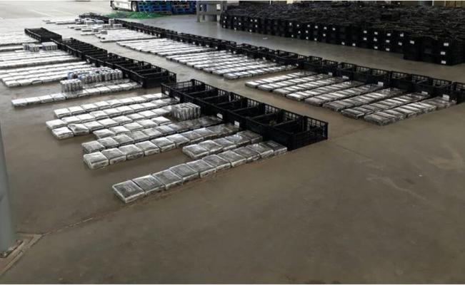 Decomisa el Ejército 800 kilos de cocaína ocultos entre aguacates en Sonora