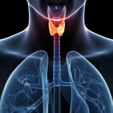 ThyroidCancer