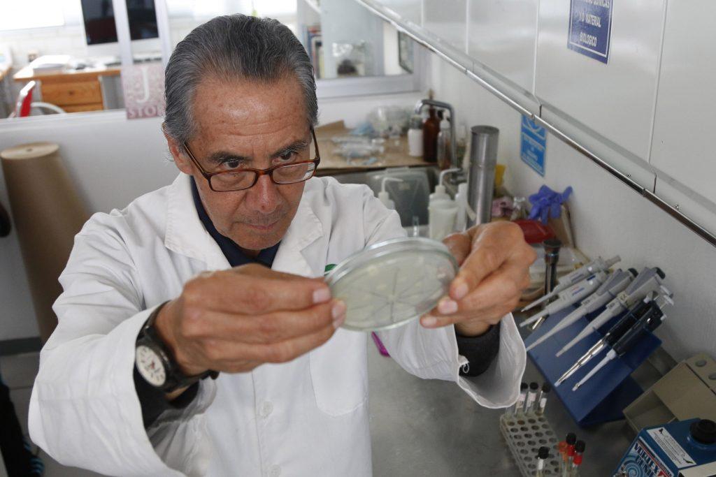 Mexicano crea antibiótico con piel de rana para curar infecciones en vacas