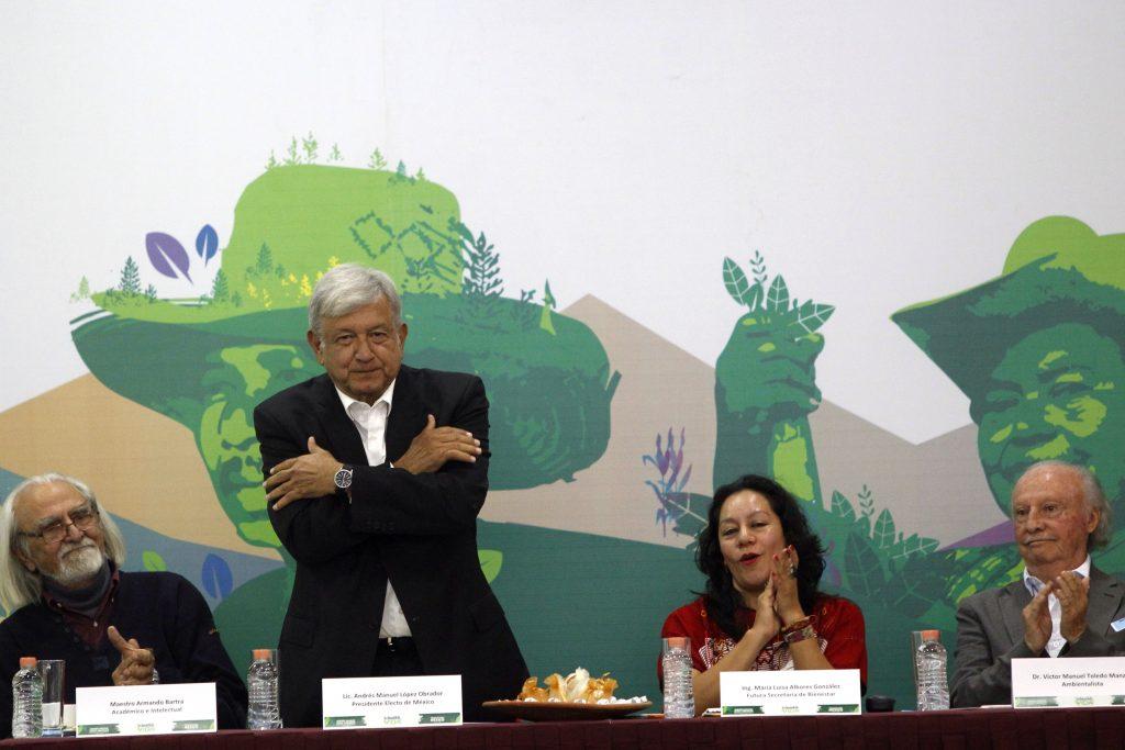 López Obrador impulsará siembra de árboles para crear empleos en zonas pobres
