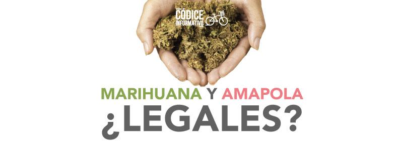 marihuana-y-amapola1