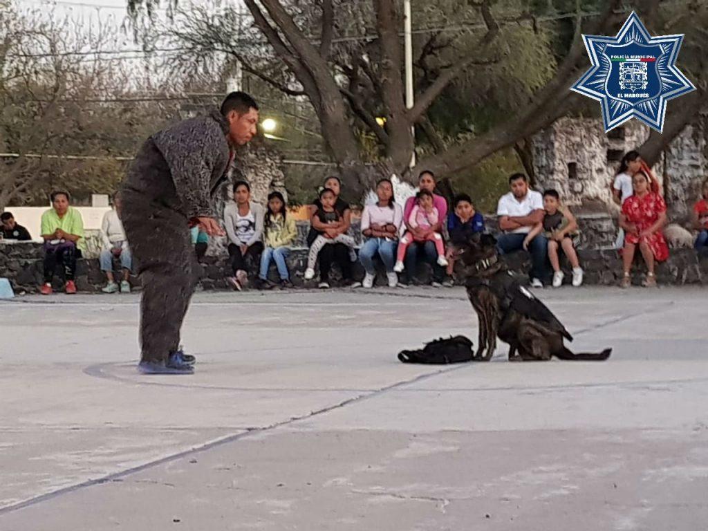 policía canina lomitos