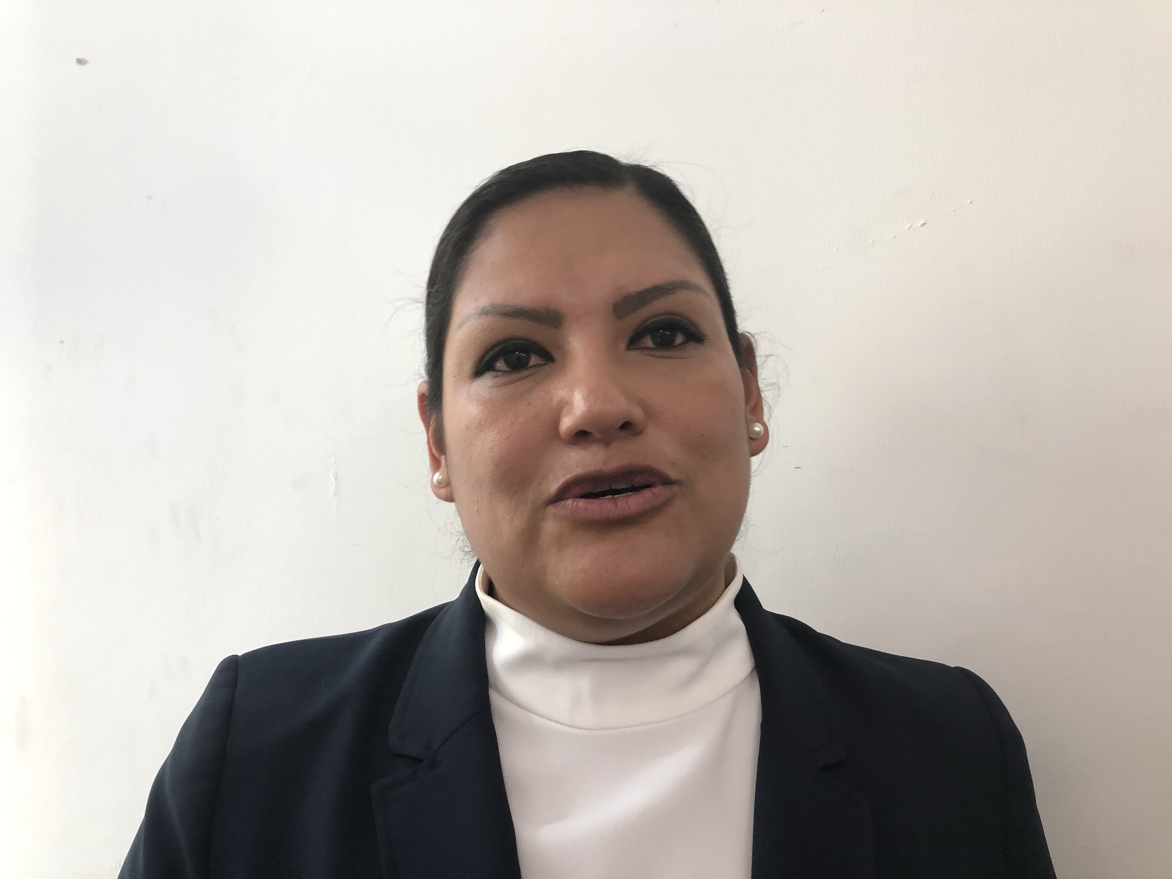 Diputada local del PRI presentará iniciativa para mejorar atención en casos de suicidio
