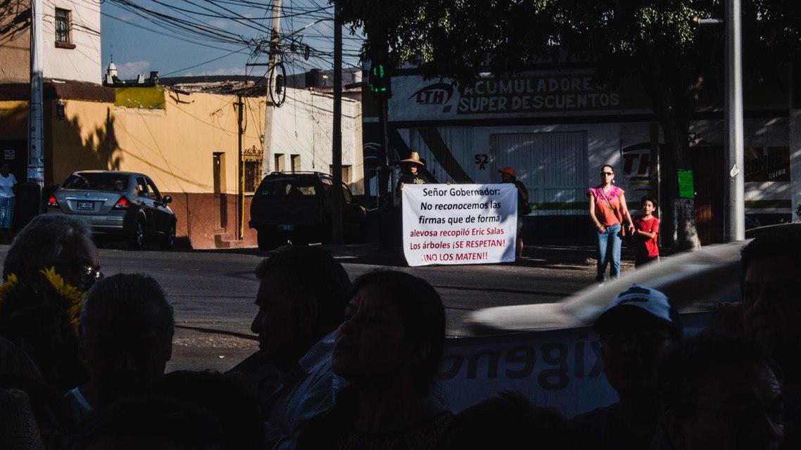 Protestan vecinos contra presunta tala de árboles en Zaragoza