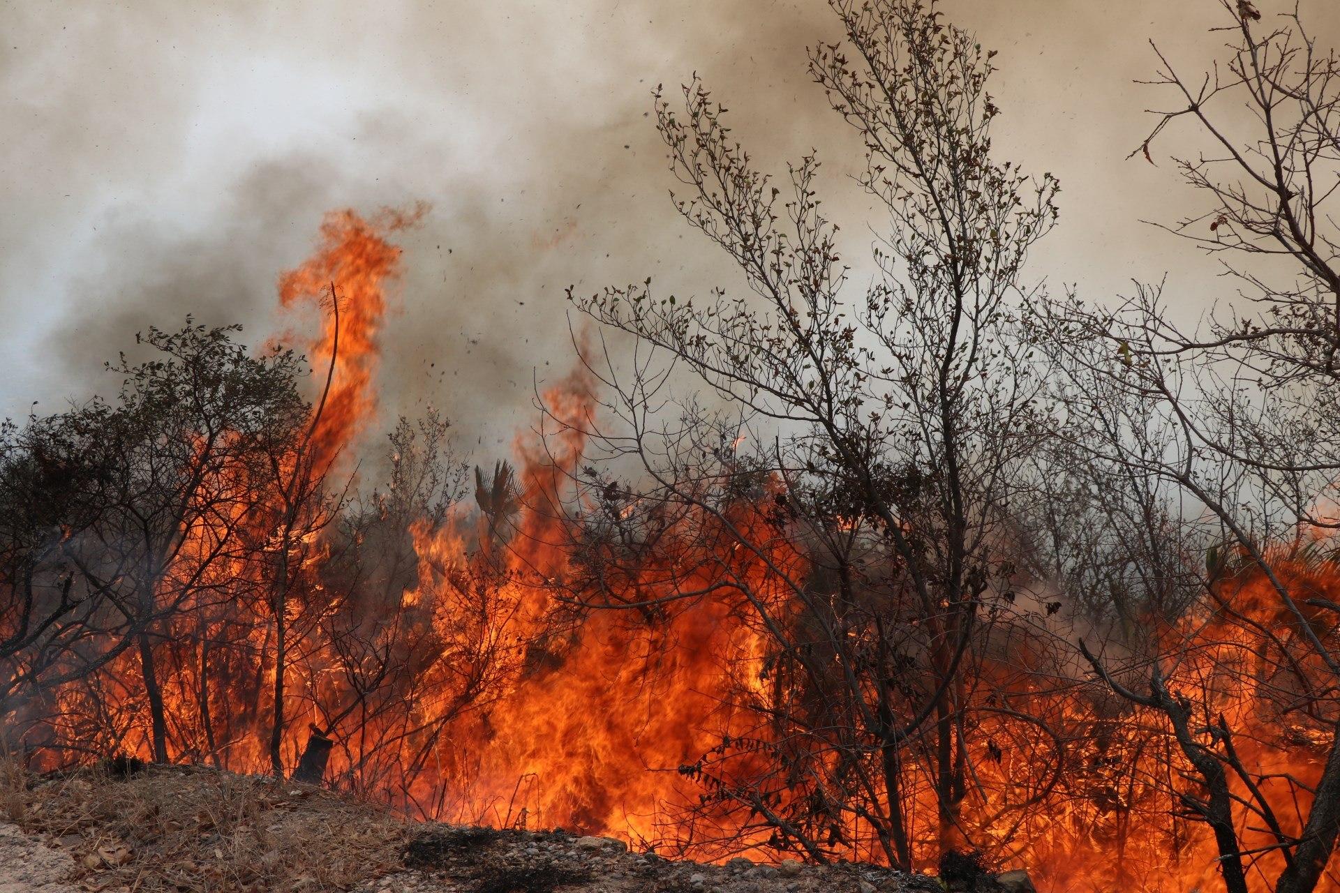 Incendio en la Sierra Gorda de Querétaro no afectó al turismo