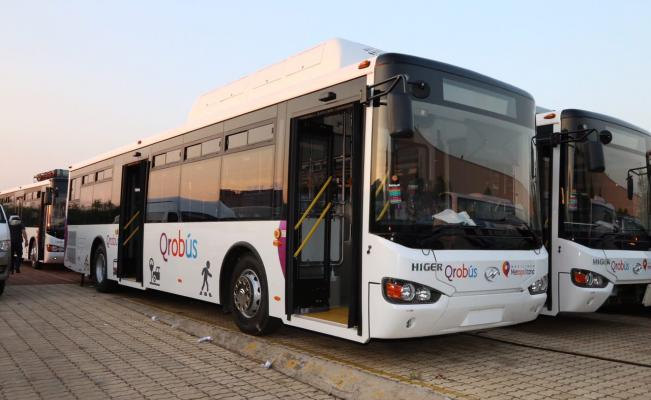 transporte_qrobus