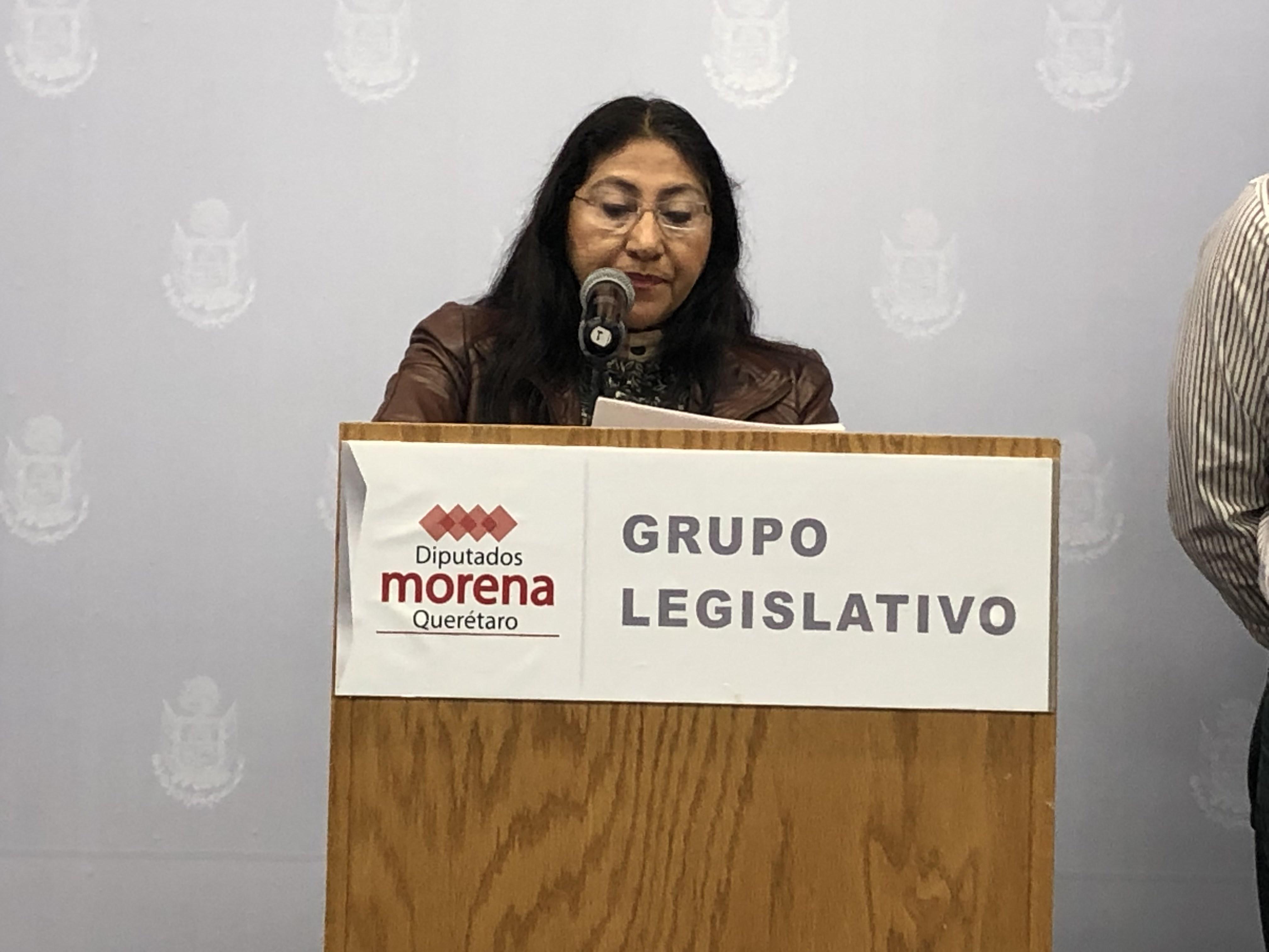A finales de mes podrían conocerse precandidatos a diputaciones federales de Morena