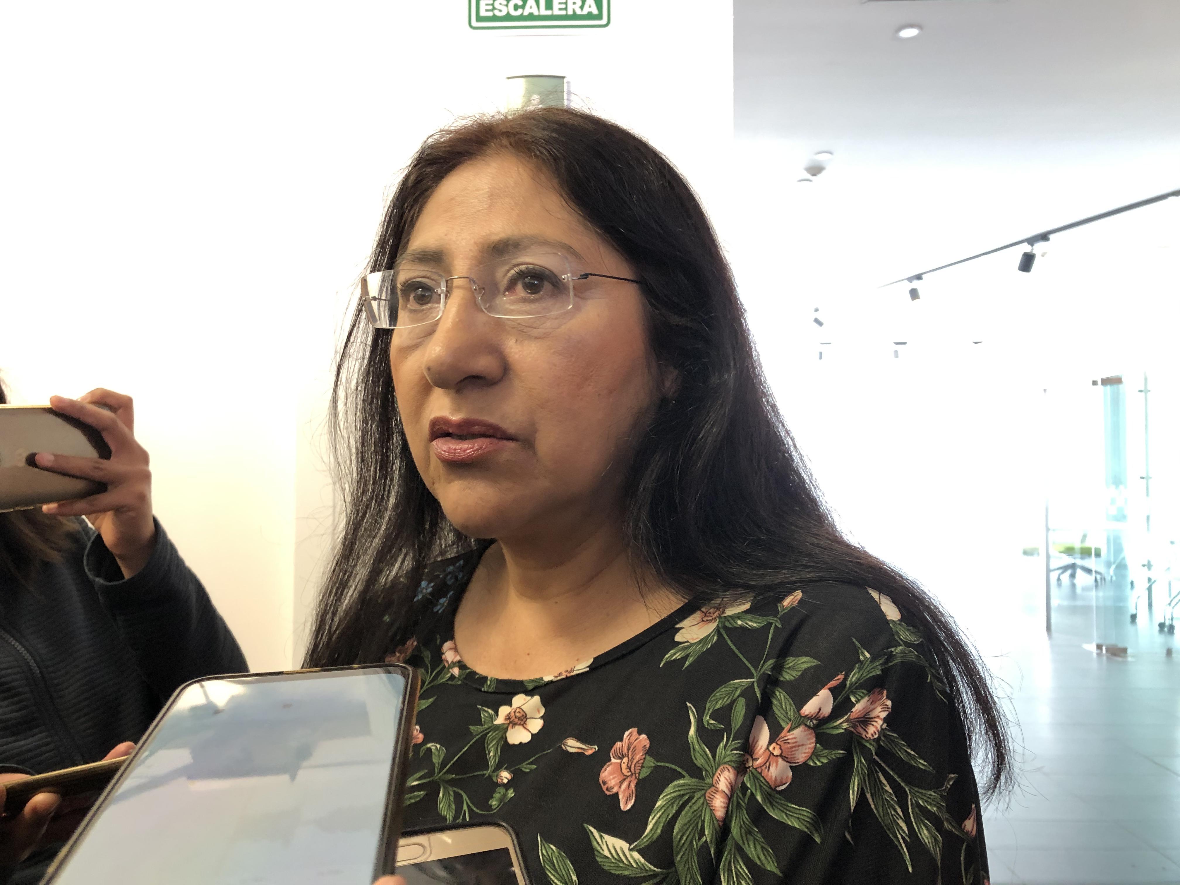 """Diputada morenista Laura Polo denuncia """"inmovilidad legislativa"""" en temas de derechos humanos"""