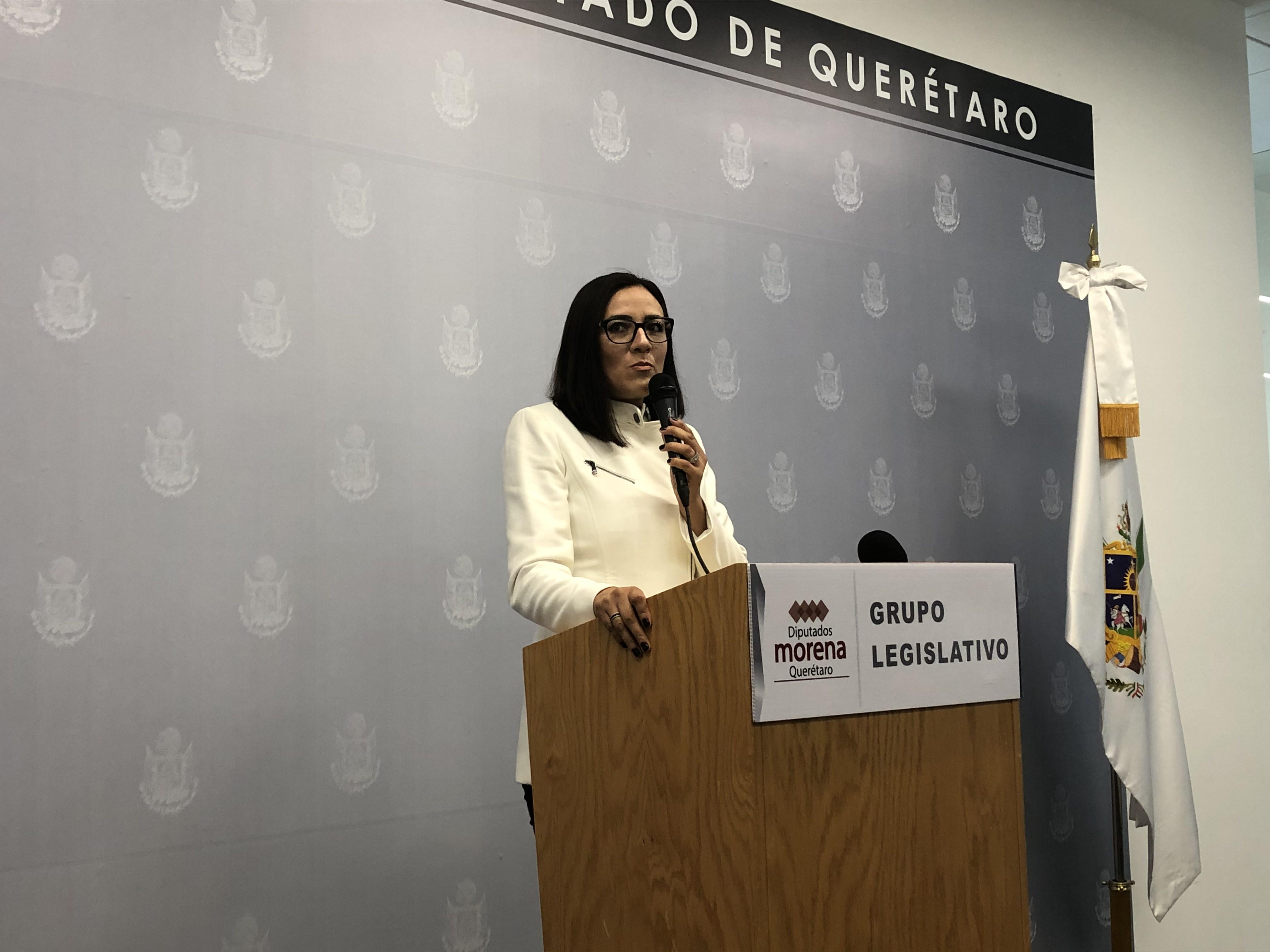 Paloma Arce propone crear Consejo Ciudadano