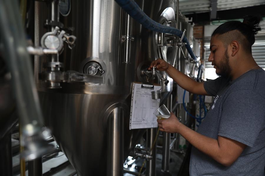Cerveza artesanal: pese a retos, vive su apogeo en México