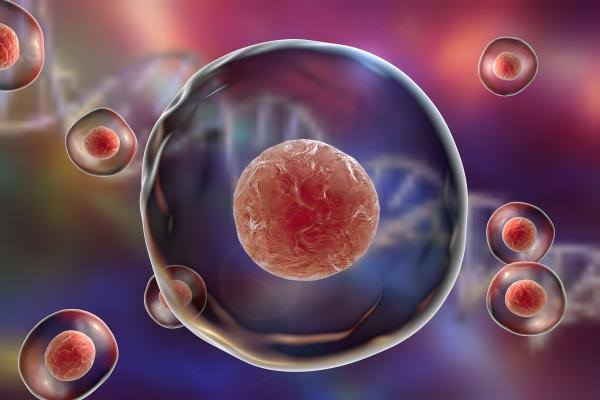 Una aspirina al día podría reducir el crecimiento de los tumores cancerosos