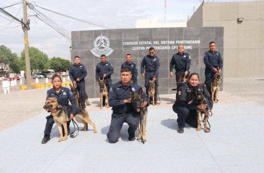 Refuerza seguridad Sistema Penitenciario de Querétaro con Unidad K-9