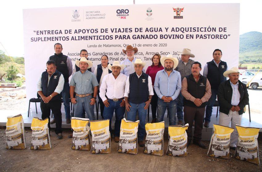 Con más de 5 mdp gobierno estatal apoya a productores queretanos