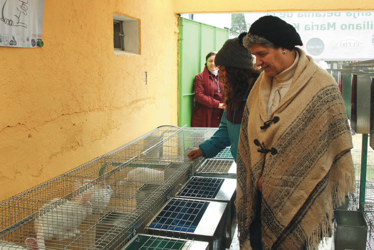 Inauguran estudiantes de la UAQ granja de conejos para la sustentabilidad de casa-hogar