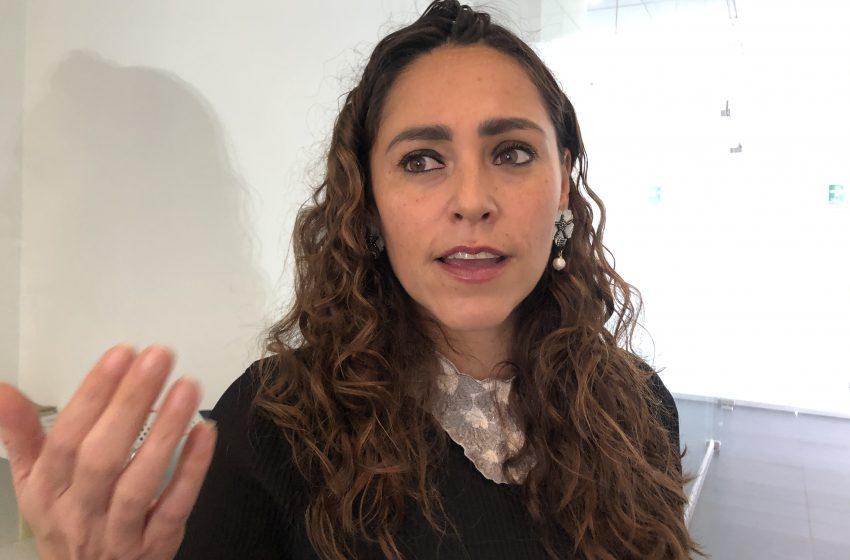 """""""Propuesta para despenalizar el aborto se ha politizado mucho"""": PRI"""