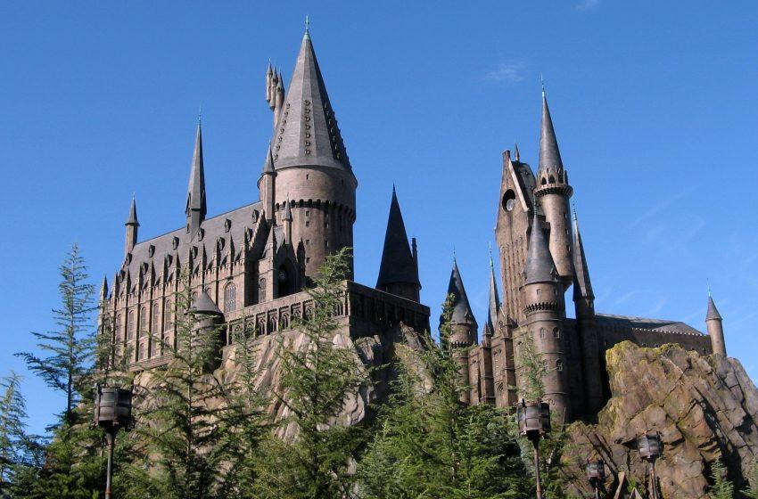 ¿Eres fan de Harry Potter? Una empresa pagará mil dólares por ver todas las películas sin interrupción