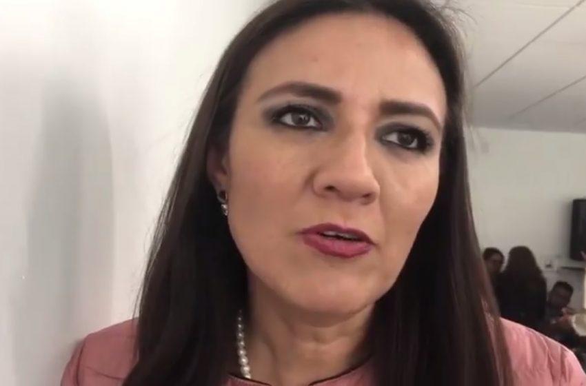 Agenda legislativa, tocó el turno de diputadas y diputados de Morena