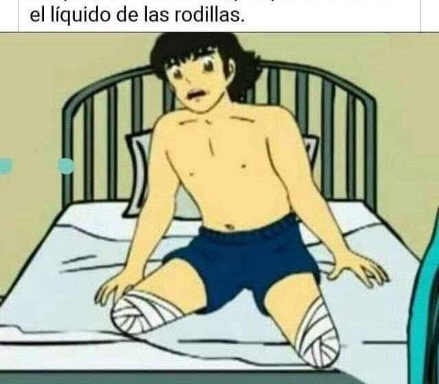 El codiciado líquido de las rodillas