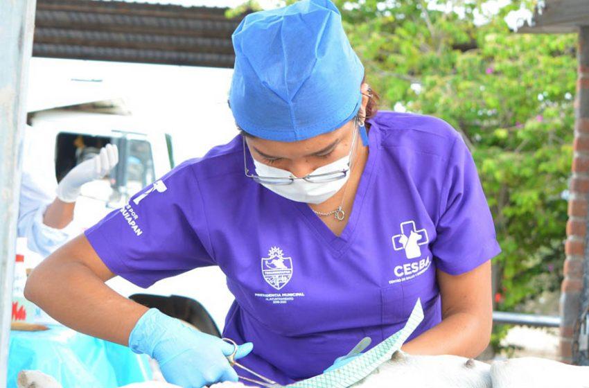 Inicia campaña gratuita de esterilización canina en Tequisquiapan
