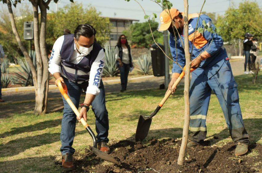 Un árbol nuevo por cada tres habitantes, meta de municipio de Querétaro para 2021
