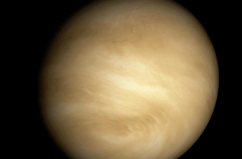 Encuentran posibles indicios de vida en Venus