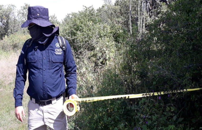 Encuentran fosas clandestinas con restos de 59 personas en Salvatierra, Guanajuato