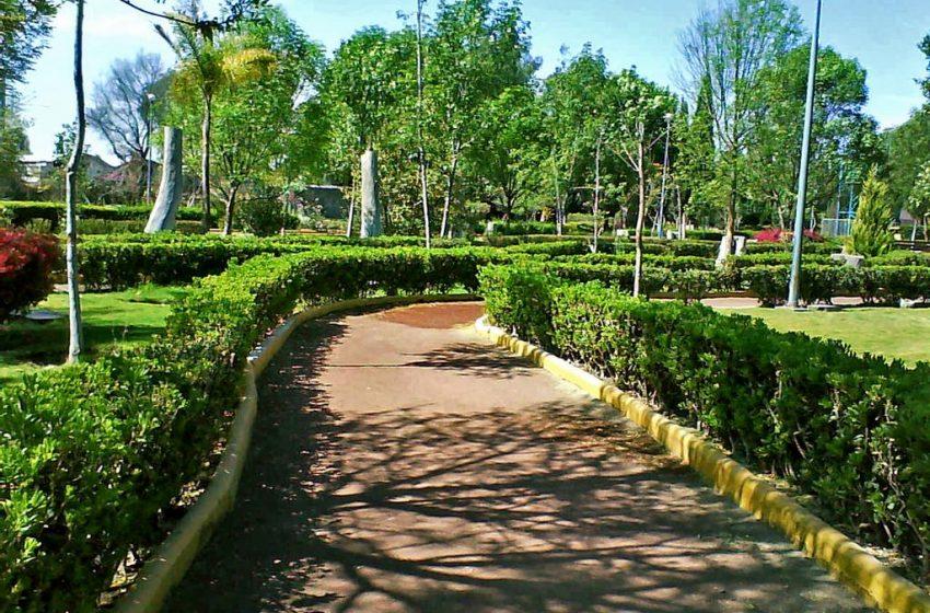 Vecinos añoran pasear por el parque Los Alcanfores