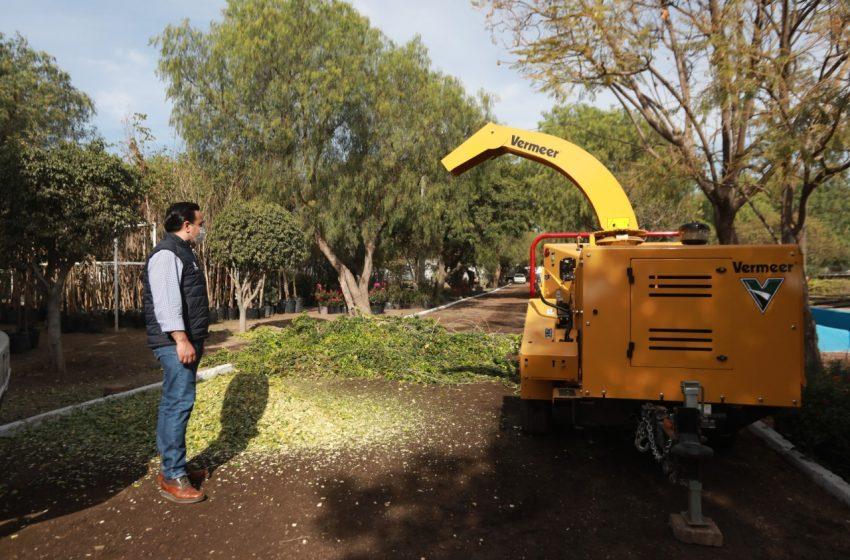 """Colocarán """"Puntos Verdes"""" para recolectar residuos de poda en Querétaro"""