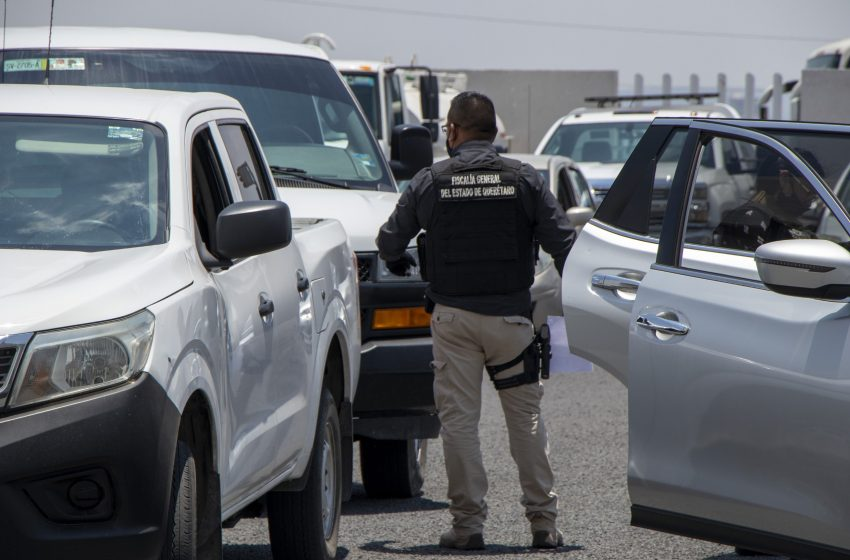 Fiscalía de Querétaro aseguró 214 kilos de marihuana durante enero