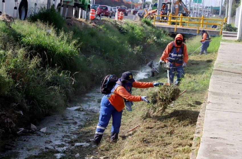 Continúa municipio de Queréraro con limpieza preventiva de drenes