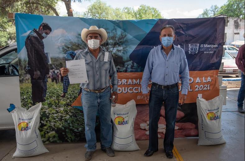 Productores agrícolas de El Marqués reciben semillas de frijol