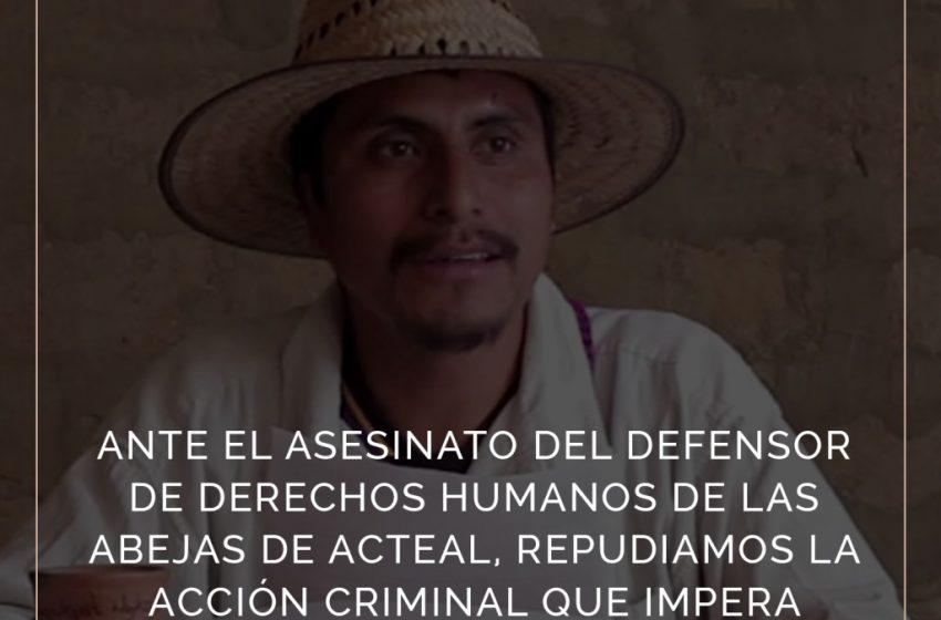 Asesinan a defensor de derechos humanos integrante de la Organización Las Abejas de Acteal
