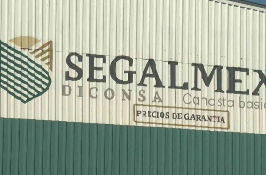 Entregó Segalmex casi 800 mdp a personas involucradas en empresas fantasma y manejos irregulares