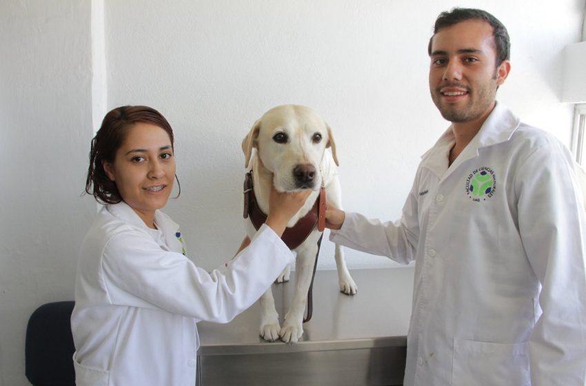 Rectora de la UAQ recorre clínica veterinaria para pequeñas especies