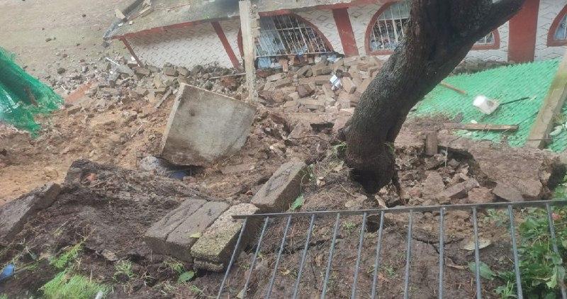 Cae albergue canino en la Ciudad de México; hay cuatro perritos muertos